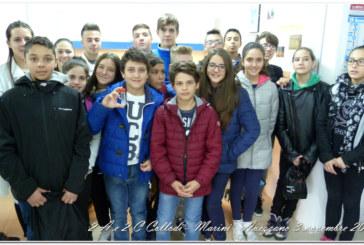 Collodi-Marini 3 novembre 2016