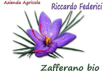 Azienda agricola Riccardo Federici