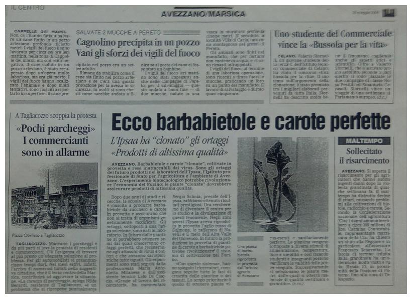 articolo barbabietola 2001