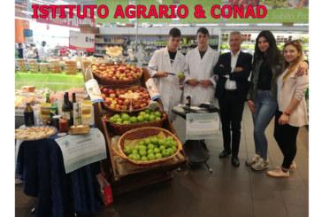 Progetto di collaborazione Serpieri & Conad