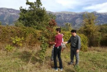 Attività pratica di ecologia ottobre 2018