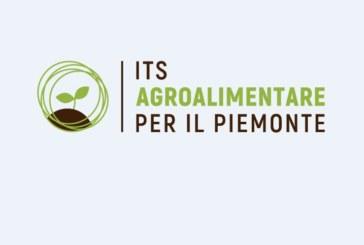 Corso per Tecnico Superiore (gratuito): responsabile delle produzioni e delle trasformazioni agrarie, agroalimentari e agroindustriali