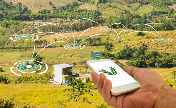 Mattinata di formazione a Trasacco sull'agricoltura sociale per le aree marginali, al via un progetto pilota della Vallelonga per i soggetti svantaggiati