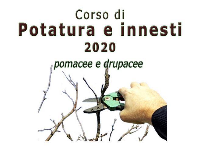 Rimborso quota iscrizione corso potatura e innesti 2020