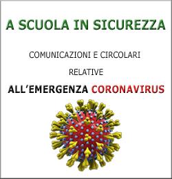 A SCUOLA IN SICUREZZA 250X260
