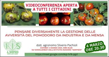 videoconferenza pomodoro 2 sotto intestazione 380×200